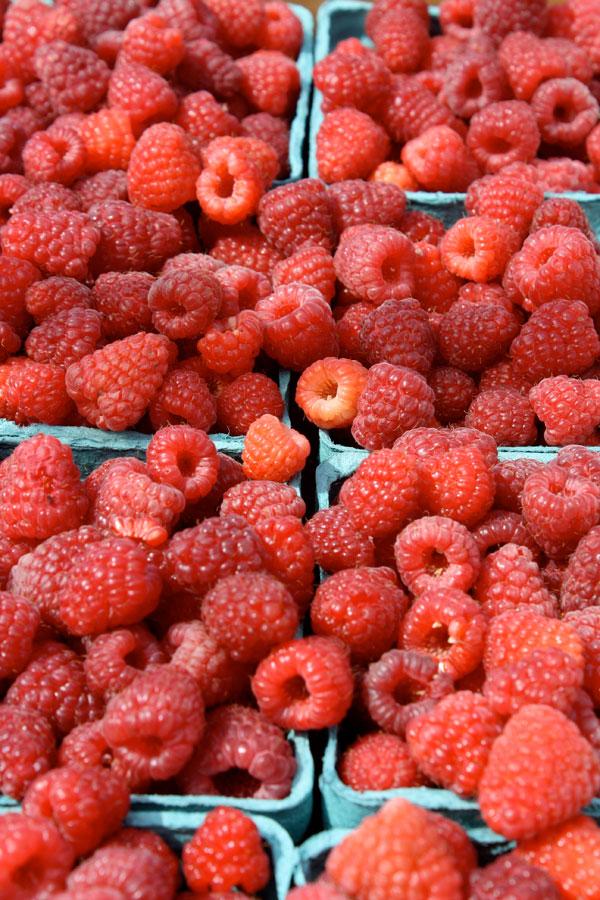 raspberriesFULLframe